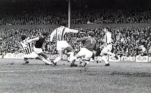 Albion combine to deny Greaves